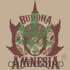 BUDDHA AMNESIA FEMINIZED