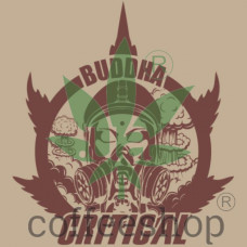 BUDDHA CRITICAL FEMINIZED