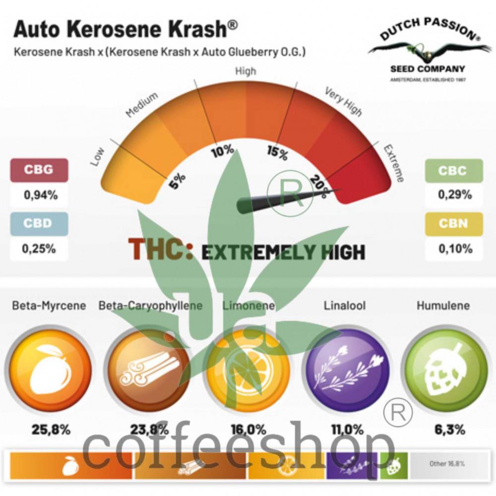 Auto Kerosene Krash feminised