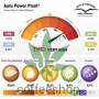 Auto Power Plant feminised