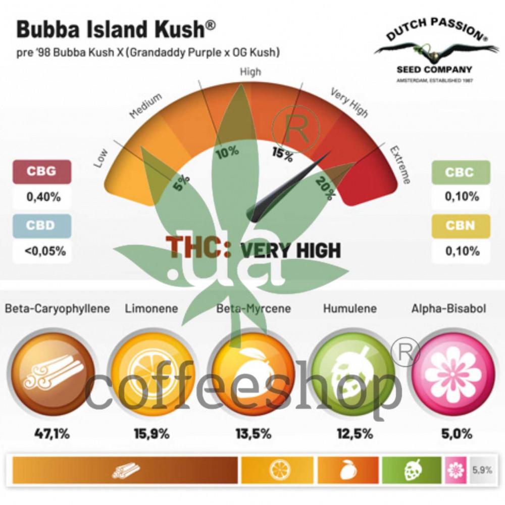 Bubba Island Kush feminised