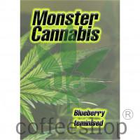 Blueberry feminised Monster Cannabis