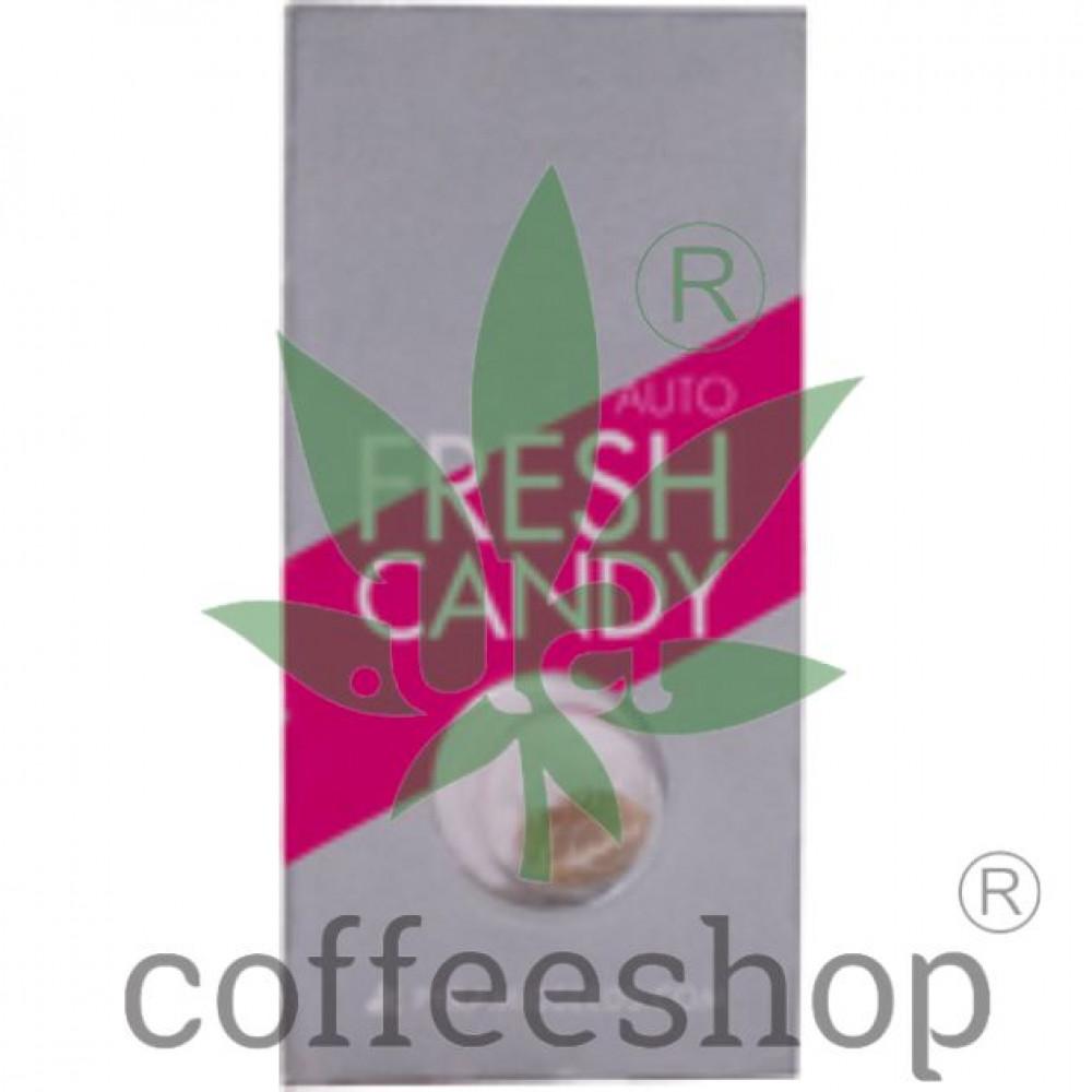 Auto Fresh Candy Feminised
