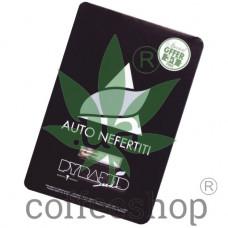 Auto Nefertiti Feminised