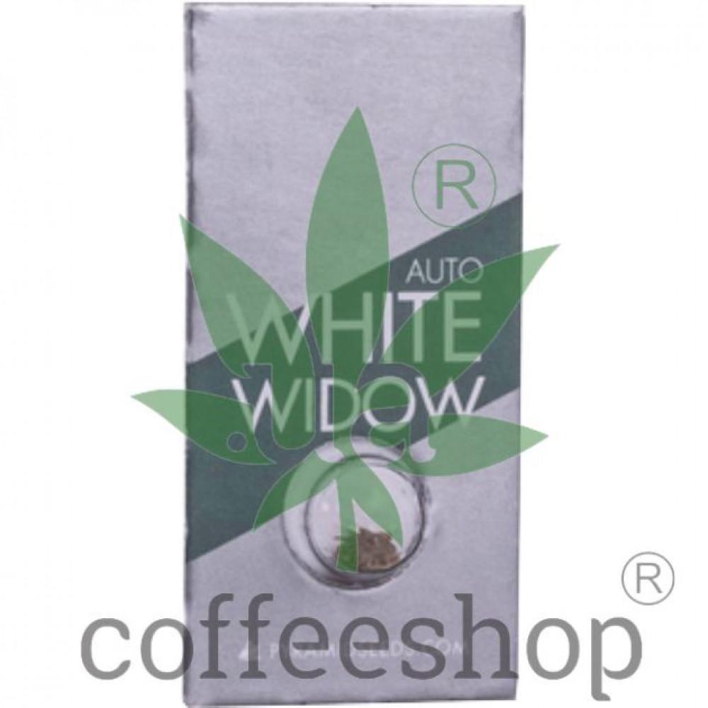 Auto White Widow Feminised Pyramid Seeds