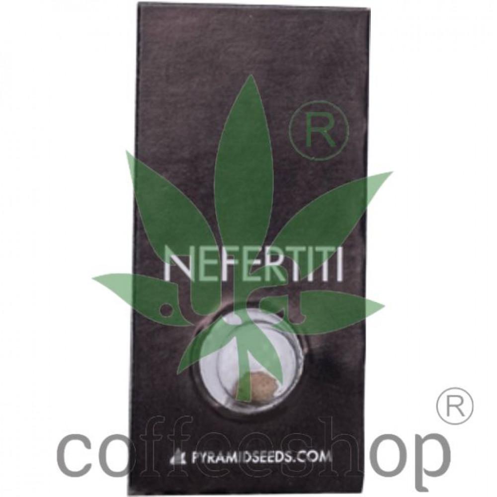 Nefertiti Feminised