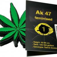 Ak 47 feminised