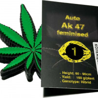 Auto Ak 47 feminised
