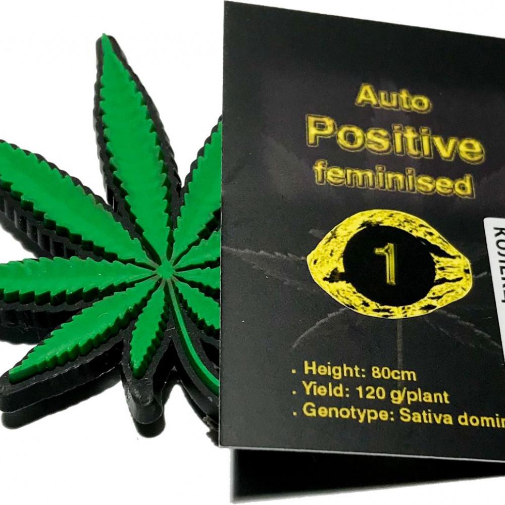 Auto Positive feminised