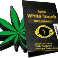 Auto White Touch feminised