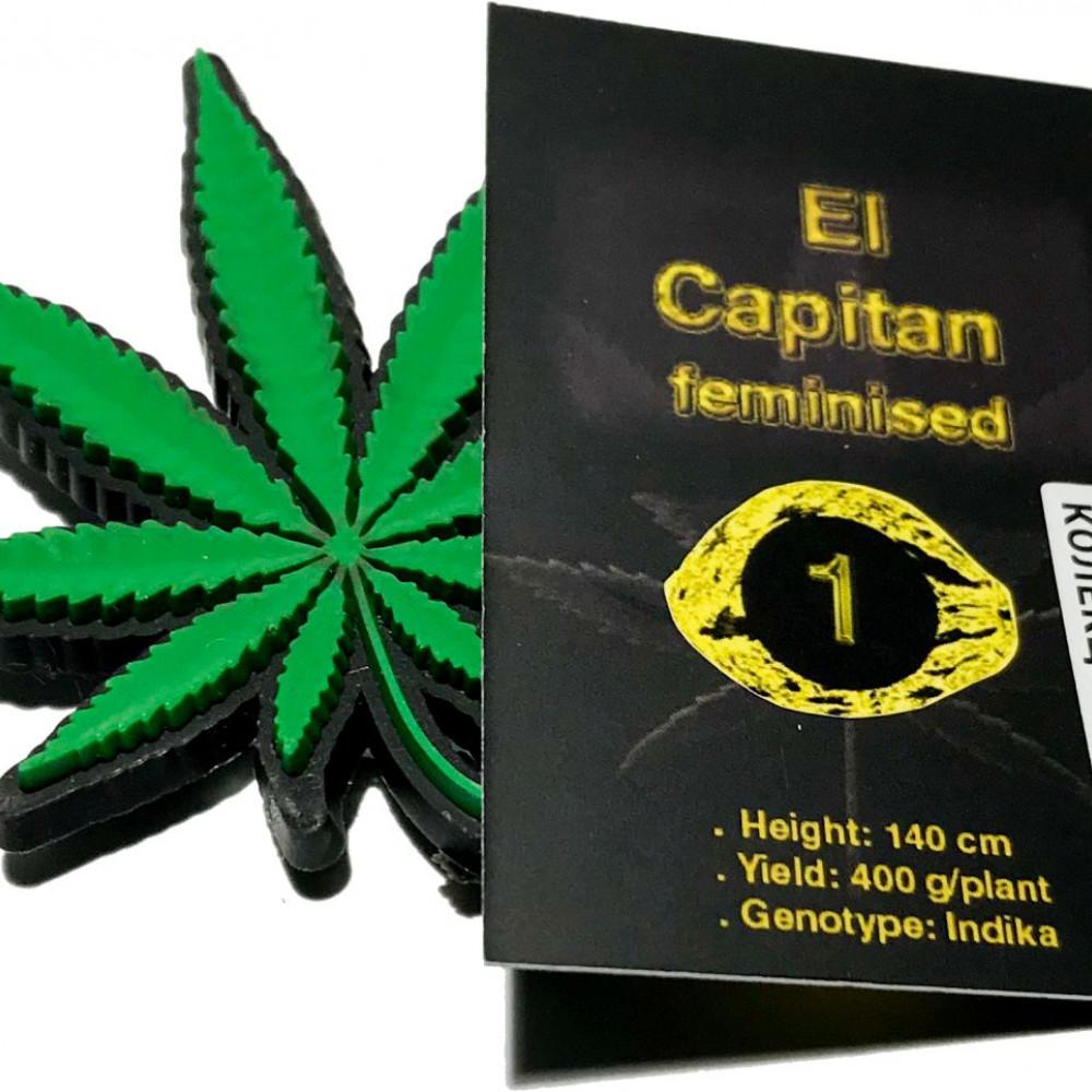 El Capitan feminised