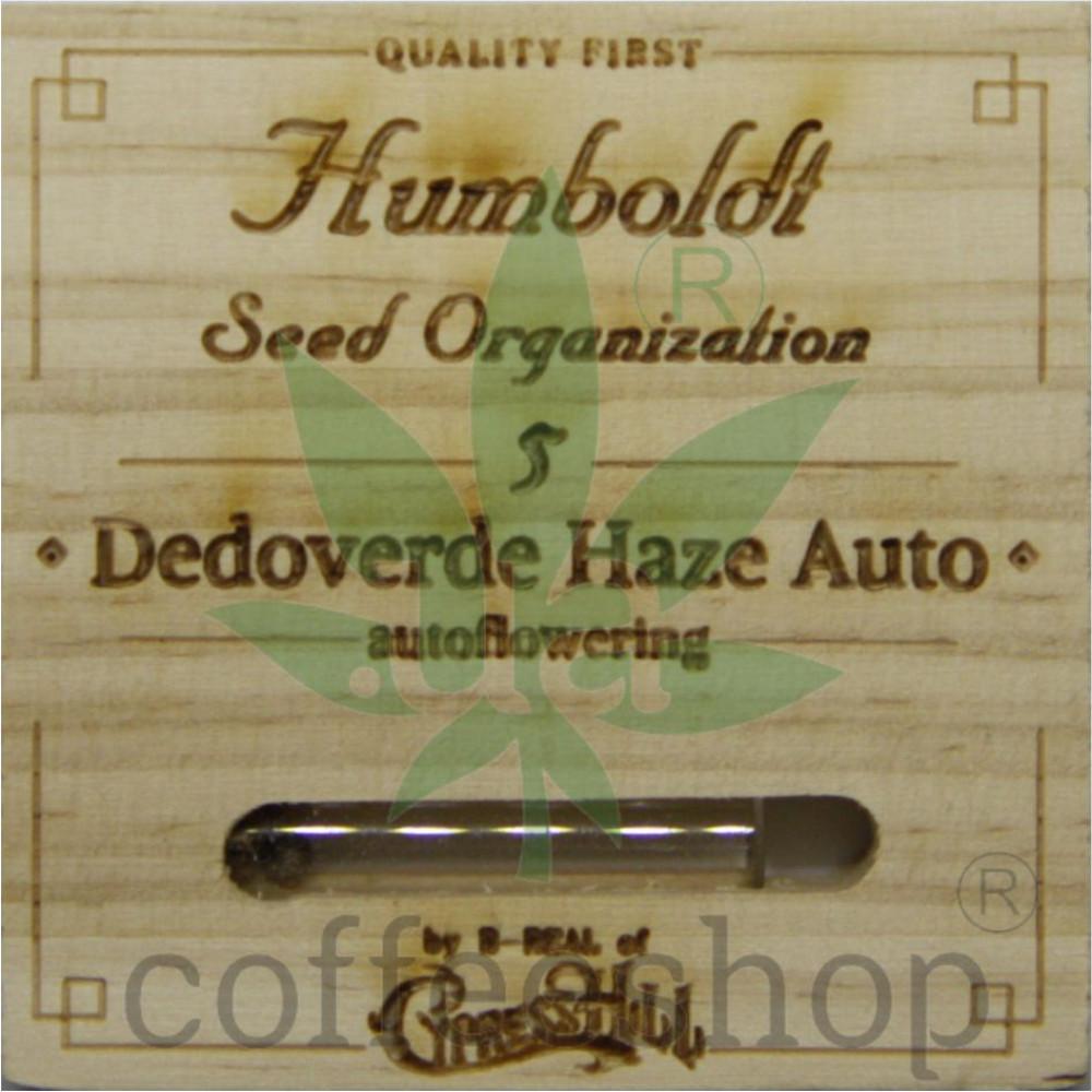 Dedoverde Haze Auto