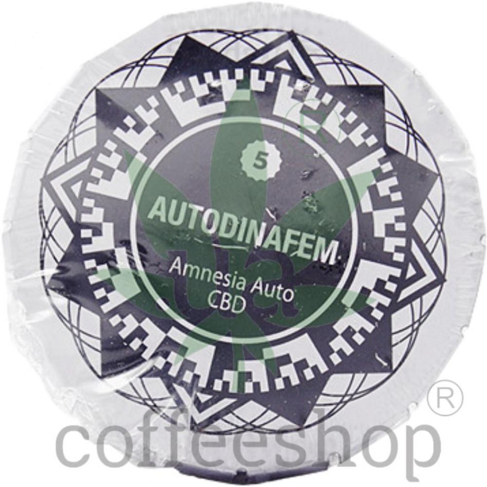 Auto Amnesia CBD Feminised