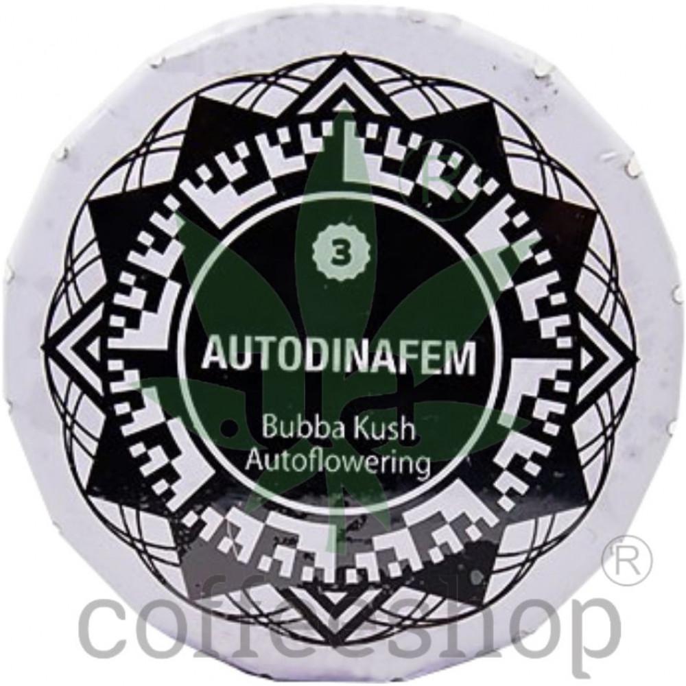 Auto Bubba Kush Feminised