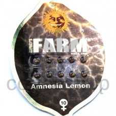 Amnesia Lemon Feminised
