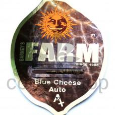 Auto Blue Cheese Feminised