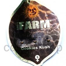 Cookies Kush Feminised