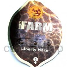 Liberty Haze Feminised