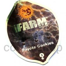 Peyote Cookies Feminised