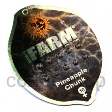 Pineapple Chunk Feminised
