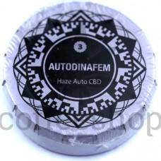 Auto Haze CBD Feminised