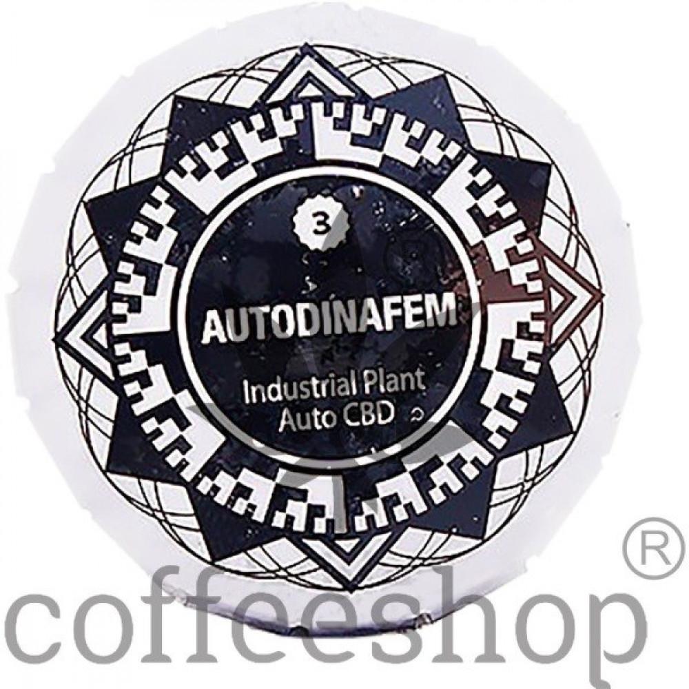 Auto Industrial Plant CBD Feminised