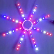 LED phyto lamp 24W