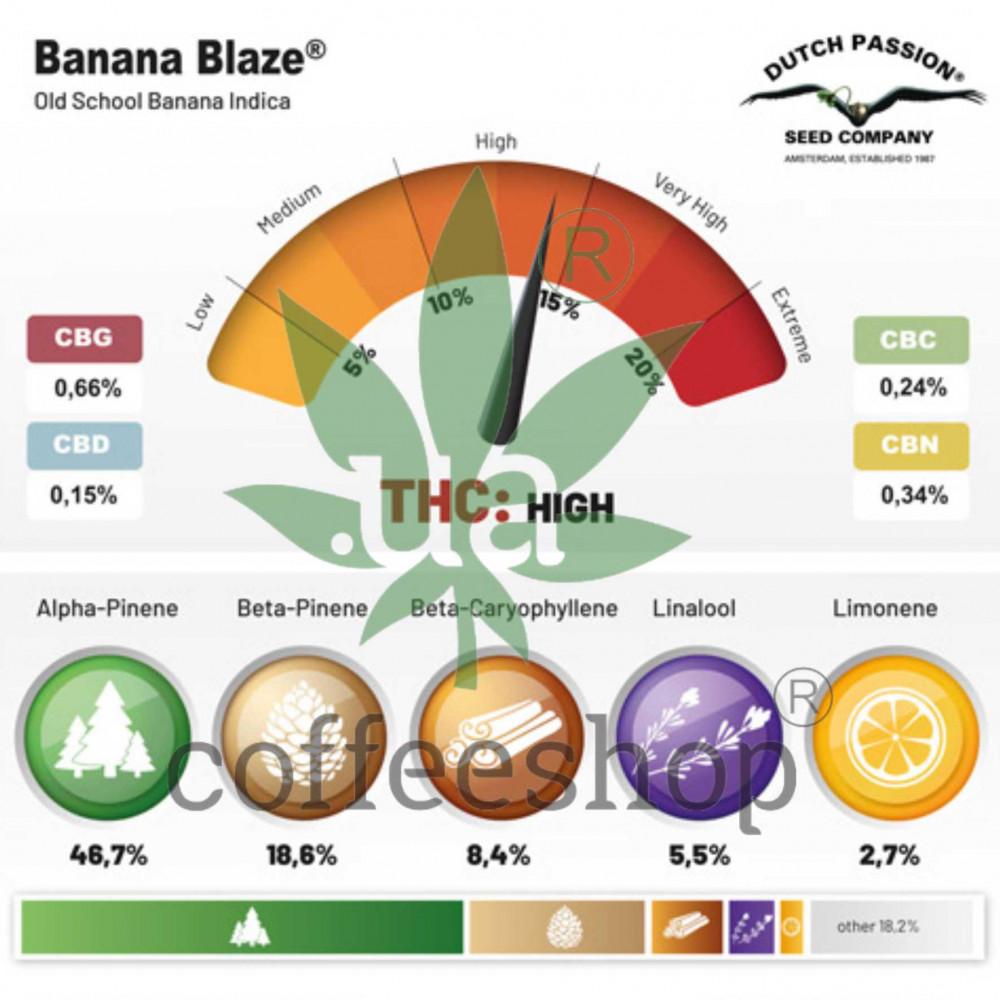 Banana Blaze feminised