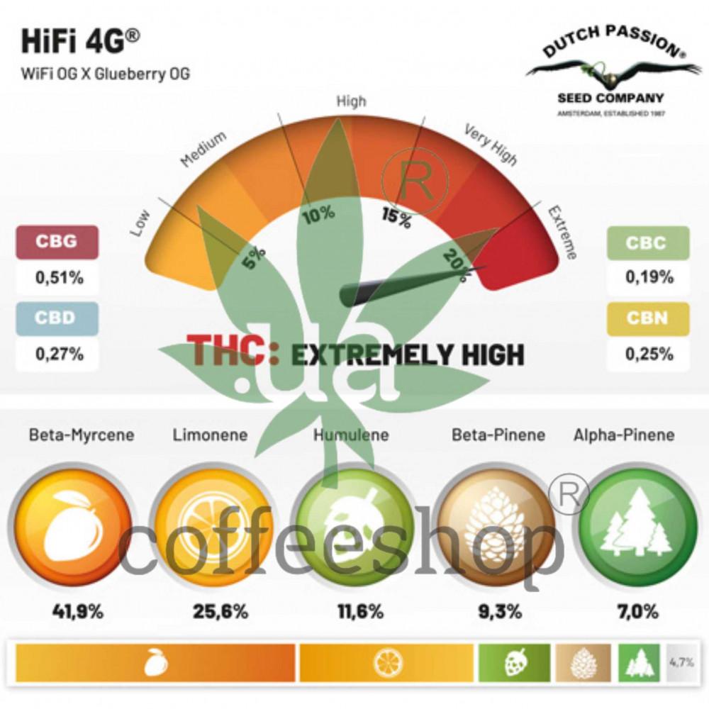 HiFi 4G feminised